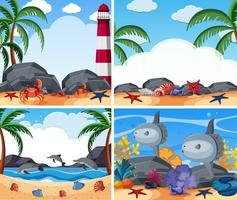 Quatre scènes d'océan avec des animaux et une plage