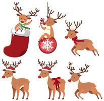 Rennes et ornements de Noël vecteur