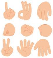 Geste de la main sur fond blanc vecteur