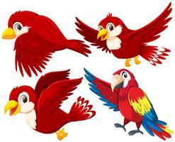 Ensemble d'oiseau rouge vecteur