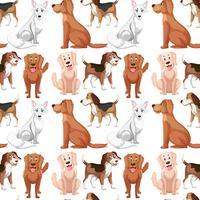 Modèle sans couture de chien de variété vecteur