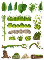 Ensemble de divers objets de la jungle vecteur
