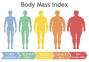 Illustration vectorielle d'indice de masse corporelle du poids insuffisant à extrêmement obèse. Silhouettes d'homme avec différents degrés d'obésité. Corps masculin de poids différent.