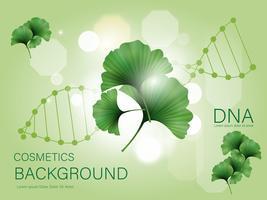 ginkgo biloba, feuilles vertes. Soins de la peau, cosmétiques naturels, plantes et isolé sur fond.