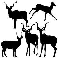 Cinq antilopes silhouettées vecteur