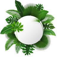 Signe rond avec espace de texte de feuilles tropicales. Convient pour le concept de la nature, les vacances et les vacances d'été. Illustration vectorielle vecteur