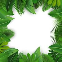 Fond avec espace de texte de feuilles tropicales. Convient pour le concept de la nature, les vacances et les vacances d'été. Illustration vectorielle vecteur