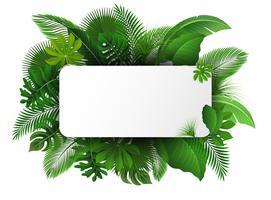 Signe avec espace de texte des feuilles tropicales. Convient pour le concept de la nature, les vacances et les vacances d'été. Illustration vectorielle vecteur