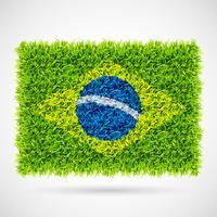 drapeau du Brésil herbe vecteur