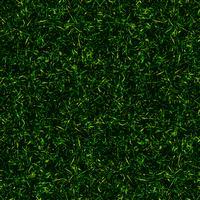 fond d'herbe vue de dessus vecteur