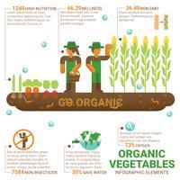 aliments sains légumes biologiques vecteur