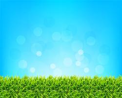 fond de ciel et d'herbe vecteur
