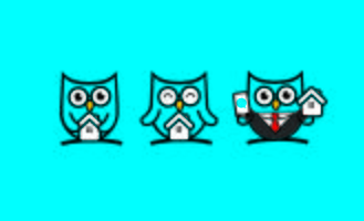 Personnage mascotte Owl Home