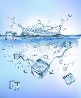 légumes frais éclabousser la glace dans l'eau claire bleue éclabousser les aliments sains régime fraîcheur concept isolé fond blanc Illustration vectorielle réaliste.