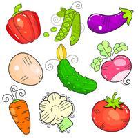 Légumes d'art. la propriété FlatStyle. La puissance