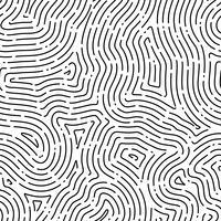 Fond transparent d'empreinte digitale sur la forme carrée.