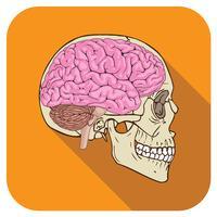 cerveau icône orange vecteur