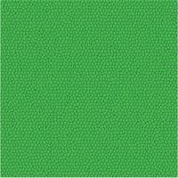 Texture de modèle vecteur cuir vert