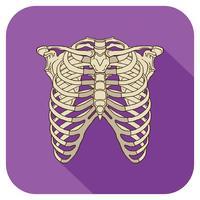 côtes icône plate violet vecteur