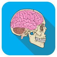 brainiac icône turquoise vecteur