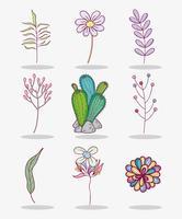 Ensemble de fleurs vecteur
