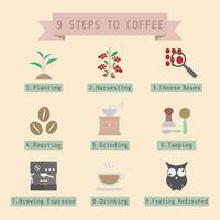 étape du processus de café