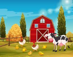 Animaux de la ferme vivant dans la ferme vecteur