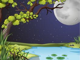 Scène de la rivière la nuit de pleine lune vecteur