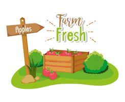 Concept de ferme frais vecteur