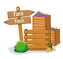 Produits frais de la ferme