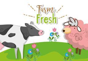 Concept de ferme frais