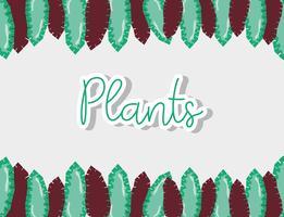 Conception de plantes colorées