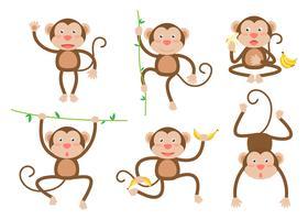 Vecteur de dessin animé mignon petits singes situé dans des poses différentes - illustration vectorielle