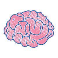 l'anatomie du cerveau humain à la créativité et à l'intellect vecteur