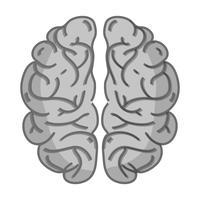 anatomie du cerveau humain en niveaux de gris pour la créativité et l'intellect vecteur
