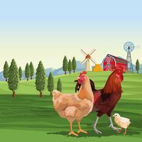 Poulets et coq sur le paysage