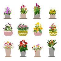 Diverses fleurs dans des pots, isolés sur fond blanc vecteur