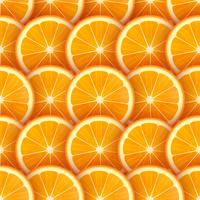 Tranches d'orange Vector Background