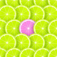tranches de citron vert pop vector background