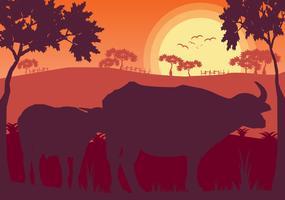 Buffalo dans le paysage de prairies vecteur