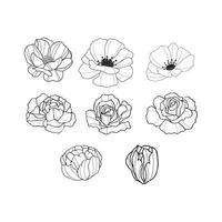 Collection de fleurs dessinées à la main vecteur