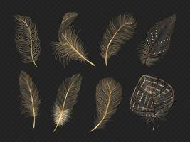 Collection de vecteurs de plumes d'or vecteur