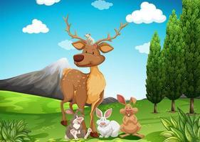 Cerfs et lapins dans un champ