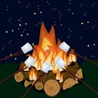 Faire griller des guimauves sur un feu de camp la nuit