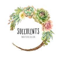Aquarelle de cactus et de plantes grasses sur une couronne de vigne.