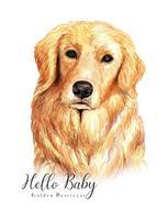 Portrait à l'aquarelle de chien Golden Retriever vecteur