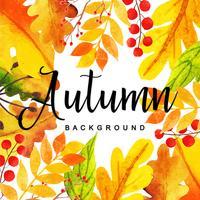 Belle aquarelle automne feuilles fond vecteur
