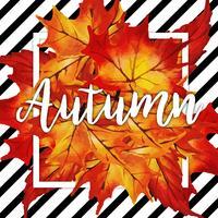 Cadre aquarelle feuilles d'automne avec fond noir de rayures vecteur
