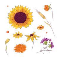 Fleurs d'automne et d'automne dessinés à la main vecteur