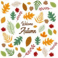 Motif de feuilles d'automne Texture vecteur